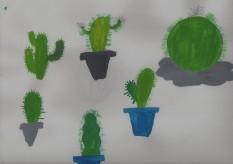 cactus016